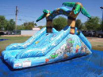 10' Tropical Water Slide with pool (Duel lane)