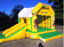 14x18 2 in 1 Jungle Bounce & Slide