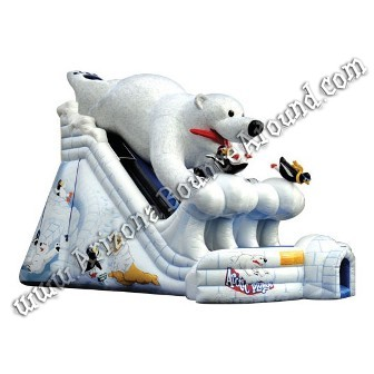 Polar Bear dual lane slide rental Phoenix Arizona