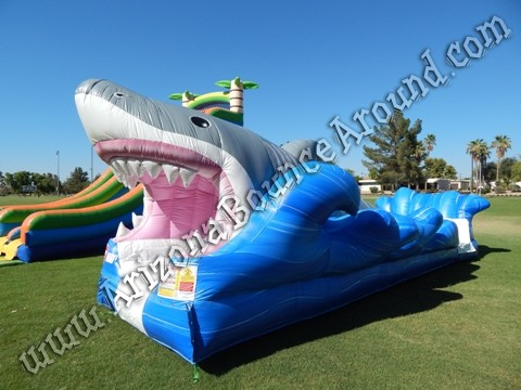 Shark Week party ideas Phoenix Arizona