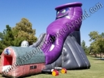 Twister Slide Rental Phoenix Arizona