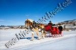 Arizona Sleigh rides for rent