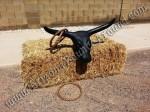 Western Bull Horn Ring Toss Game Rental - Phoenix Arizona