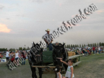 Hay Rides for Hire, Hay Ride rentals, Phoenix, Scottsdale AZ