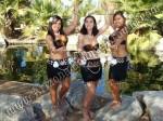 Hula Dancers Phoenix, Scottsdale Arizona