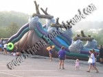 Huge inflatable water slide rentals Phoenix AZ