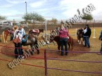 Pony Rides for Hire, Pony Ride rentals, Phoenix, Scottsdale AZ
