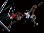 Professional Basketball Hoop Rentals Scottsdale and Phoenix, AZ