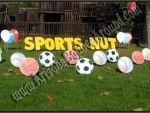Sports party yard sign supply rental in az